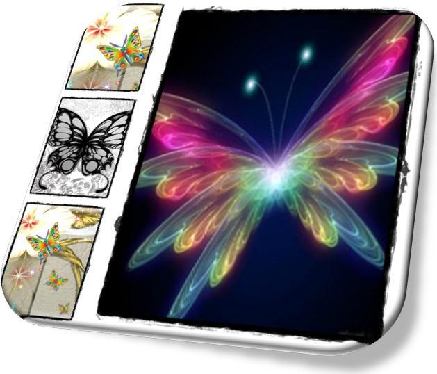 cover-butterfly-kupu-kupu.jpg